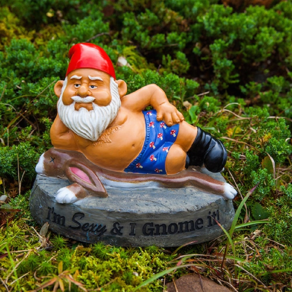 Lovely Novelty Naughty Garden Gnomes Outdoor Statues Ornaments Funny