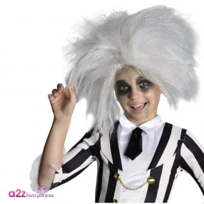 ~ Beetlejuice Wig - Kids Accessory
