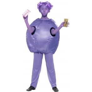 ~ Violet Beauregarde - Kids Costume
